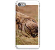 Donna Nook Seals iPhone Case/Skin