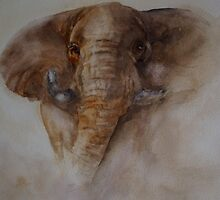 kicking up the dust by yvonne malvarosa