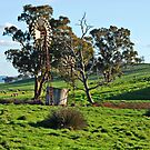 Twin Mills by GailD