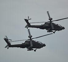 Apache`s on the Prowl by mike  jordan.