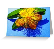 Shadow of Nature Greeting Card