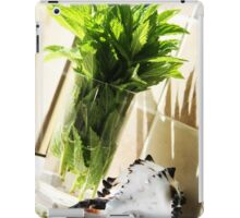 mint in a jar iPad Case/Skin