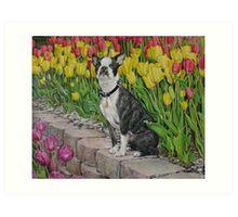 Winnie Art Print