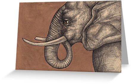 The Elephant in the Room by Lynnette Shelley