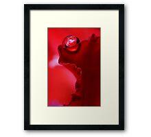 Ruffle Red Framed Print