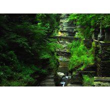 Ithaca's Treman State Park Photographic Print