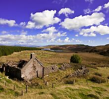 Ruin at Killypole by peartree