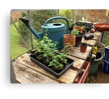 The Untidy Greenhouse Canvas Print