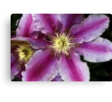 Dr Ruppell duo Canvas Print