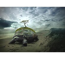 Turtle Island - Iroquois Creation Story Photographic Print