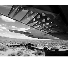 Flaps Down and Out Photographic Print