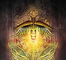 Fireflies by alexcaughtfire