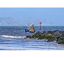 Escorted Home ~ Lyme Regis Photographic Print