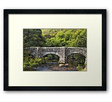Devon Framed Print