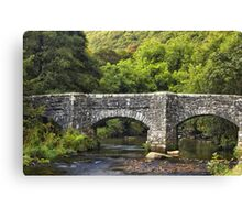 Devon Canvas Print