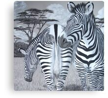Grazing - Grevy's Zebras Canvas Print
