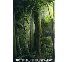 Rain Forest Photographic Print