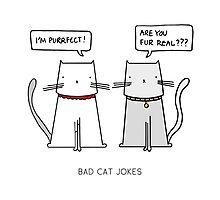 BAD CAT JOKES Photographic Print