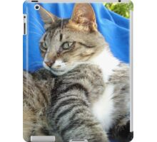 Tabby Cat Against Blue Cloth Background iPad Case/Skin