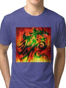 DRAGON RAMPANT Tri-blend T-Shirt