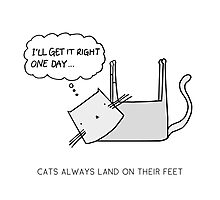 CATS ALWAYS LAND ON THEIR FEET Photographic Print
