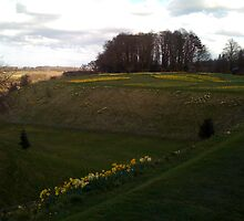 view from Alnwick castle in spring time...... by marieangel