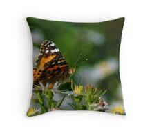092209-104 Throw Pillow