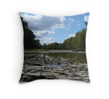 Maumee River in Summer Throw Pillow