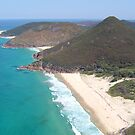 Zenith Beach by Natasha M