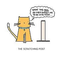 THE SCRATCHING POST Photographic Print