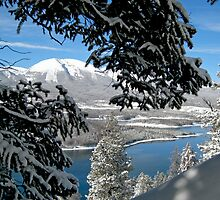 Lake Dillon in Snow by Gene  Tewksbury