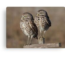 Mom and Dad Canvas Print
