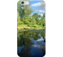 Lily Pond in the Afternoon iPhone Case/Skin