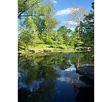 Lily Pond in the Afternoon Photographic Print
