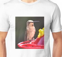 FEMALE HUMMER SITTING ON FEEDER PERCH WATCHING MALES Unisex T-Shirt