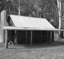 Upper Jamieson Hut, N.E. Victoria, Australia by MissyD
