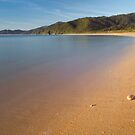 Totaranui beach, Abel Tasman National Park 8 by Paul Mercer