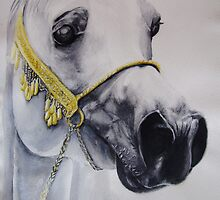 Arab In Greys by Felicity Deverell