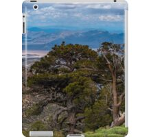 VIEW FROM THE TOP iPad Case/Skin