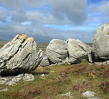 Burren Rocks by John Quinn