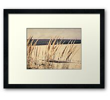 Dune Grass Framed Print