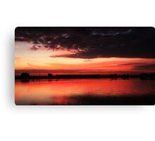 sunrise over Celery Fields Canvas Print