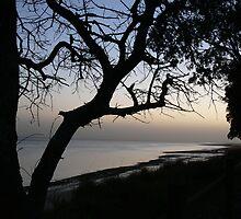 Dawn at Burrum by PhotosByG
