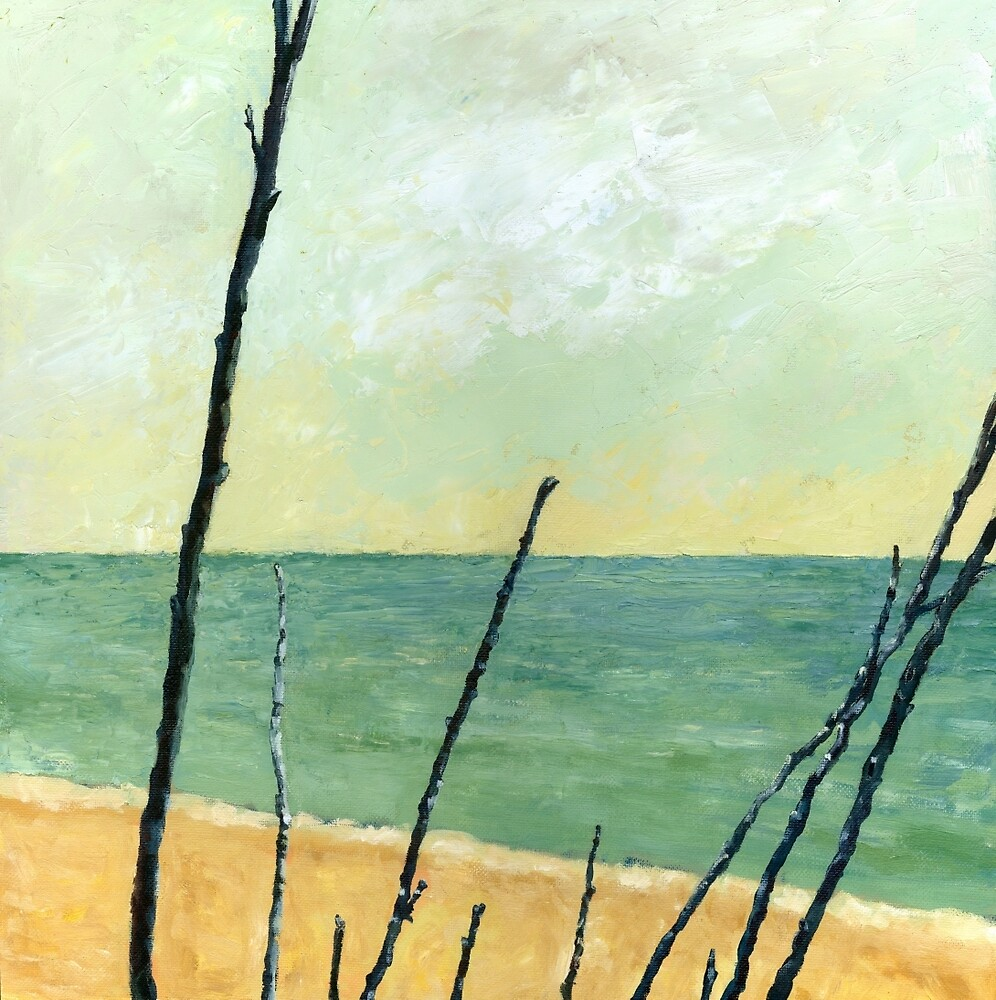 Branches on the Beach by Michelle Calkins