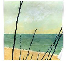 Branches on the Beach Poster