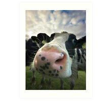 Nosey Cow Art Print