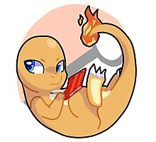 Pokemon Charmander Pokeball Photographic Print