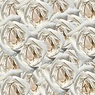 JUST WHITE ROSES by Thomas Barker-Detwiler