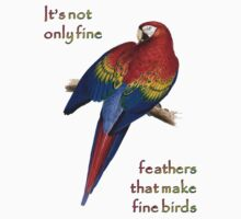 It's Not Only Fine Feathers T-Shirt
