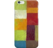 Abstract Color Panels lV iPhone Case/Skin